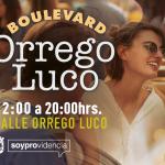 Boulevard Orrego Luco