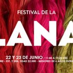 Festival de la Lana