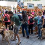 Feria Pets: Un fin de semana dedicado a las mascotas en Parque