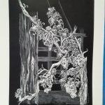 """Exposición: """"Encuentro con la Naturaleza"""" de Yankelys Hidalgo."""