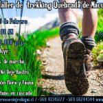 Taller de iniciación al Trekking, Quebradade Macul