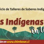 Expo Talleres Indígenas