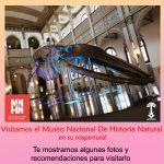 Reapertura Museo Nacional de Historia Natural