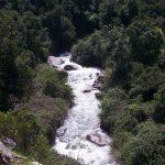 Santuario de La Naturaleza el Arrayán